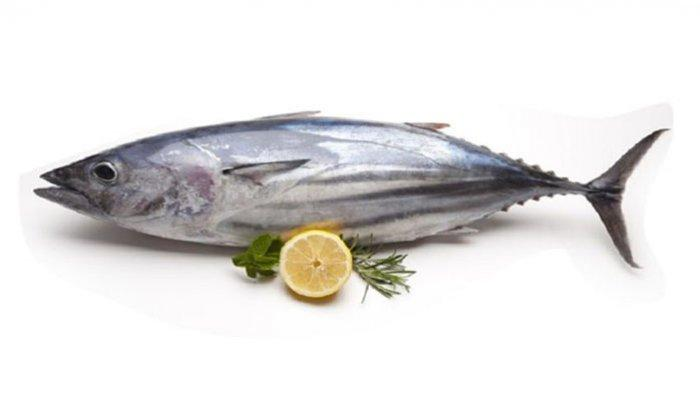 resep siomay ikan tongkol