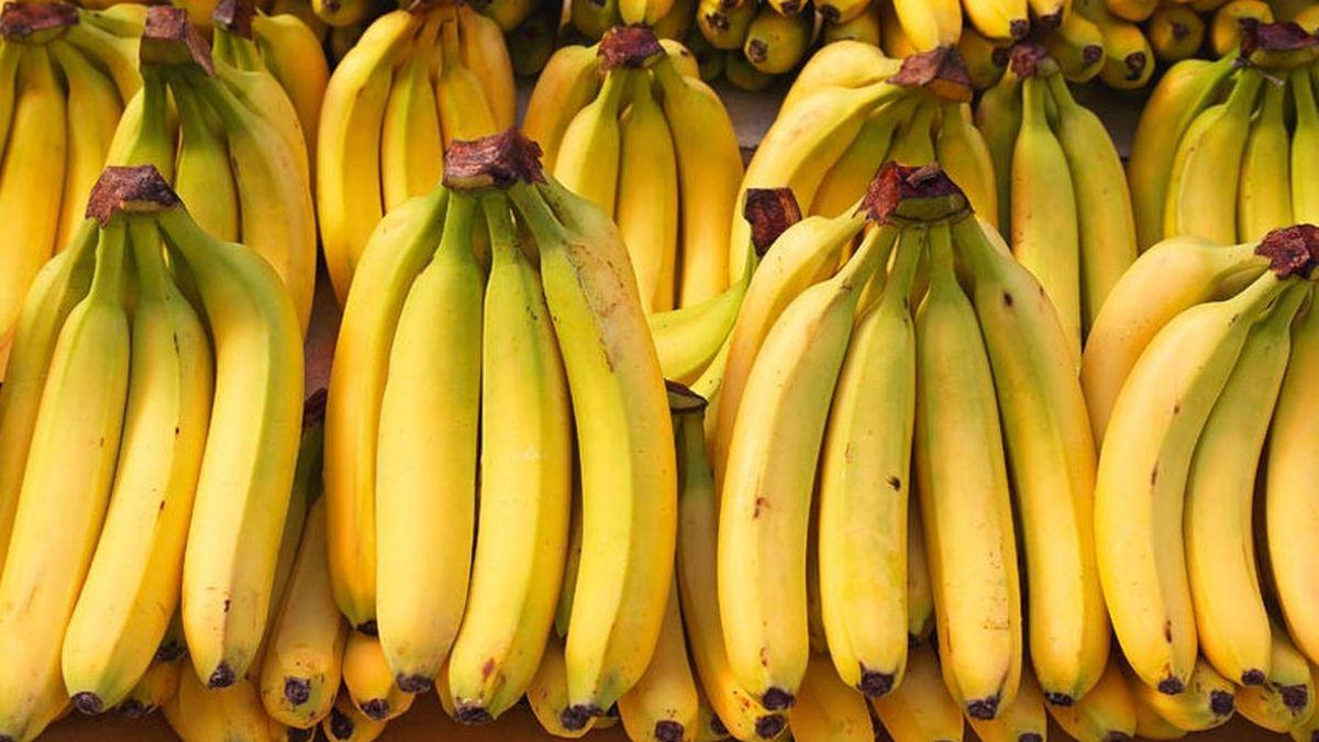 jenis pisang yang pas digoreng
